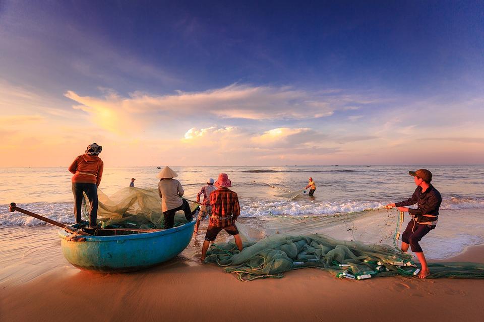 cảnh đánh bắt cá ở biển Sầm Sơn - Bãi biển Sầm Sơn thuộc tỉnh nào